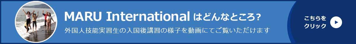 MARU Internationalはどんなところ?